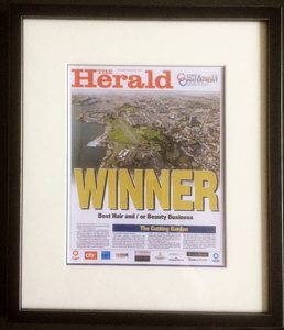 City and Waterfront award 2017