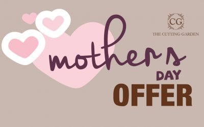 Mother's Day Offer from The Cutting Garden