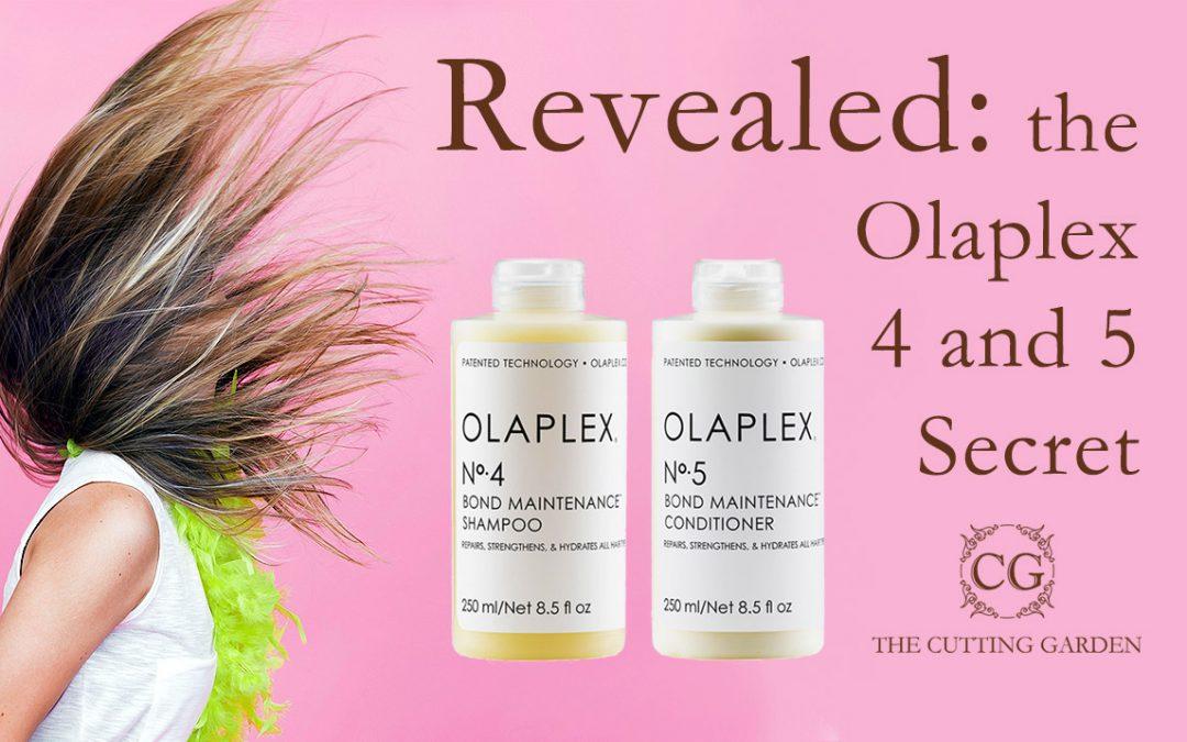 Revealed: the Olaplex 4 and 5 Secret